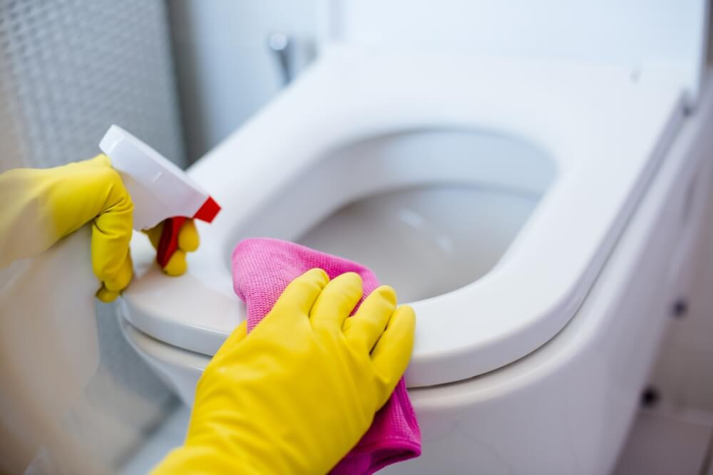 behind toilet - How to Clean Your House Professionally In 5 Hours