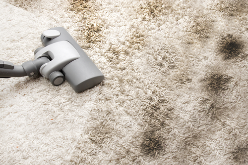 remove dust mites - How to Clean Your House Professionally In 5 Hours